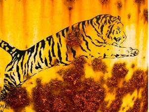 Valmue tiger  115 x 43,5