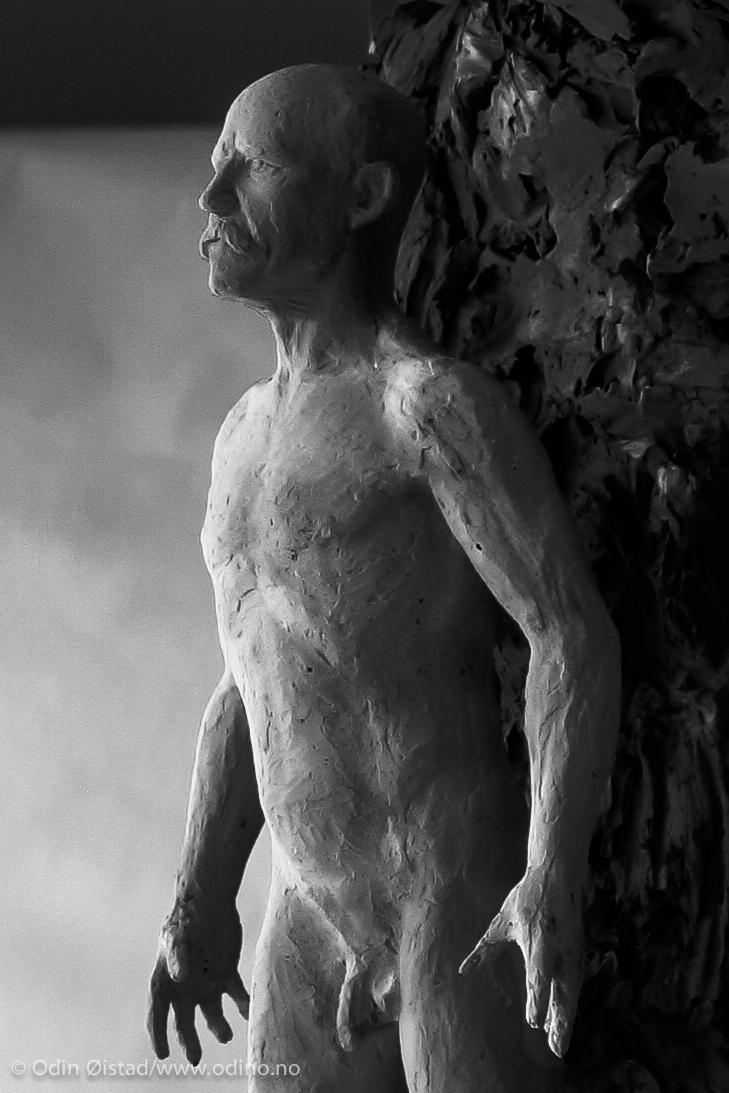 Nansen Monument detail